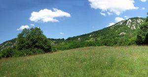Zöld domboldal